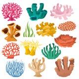 Ensemble coralloidal de cooralreef d'illustration sous-marine corallienne ou exotique de mer de corail de vecteur de faune marine illustration stock