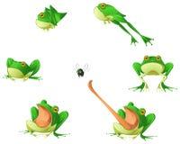 Ensemble d'élément de conception de bande dessinée de grenouille Images libres de droits