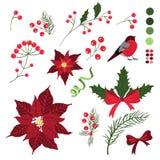 Ensemble d'éléments décoratifs pour des cartes de vacances de Noël avec des fleurs et des baies illustration stock