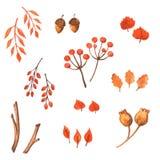 Ensemble d'éléments d'automne d'aquarelle Tiré par la main Image stock