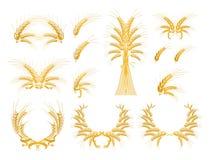 Ensemble d'éléments de conception avec du blé Images libres de droits