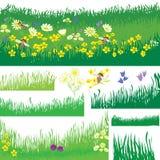 Ensemble d'éléments de conception avec l'herbe, les fleurs et l'abeille Images libres de droits