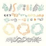 Ensemble d'éléments de conception de vecteur Éléments tirés par la main floraux illustration de vecteur
