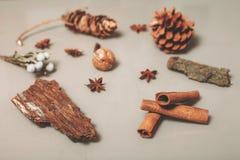 Ensemble d'éléments de décoration de fleuriste sur la table Photo stock