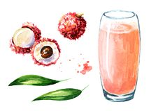 Ensemble d'éléments de jus de litchi Illustration tirée par la main d'aquarelle d'isolement sur le fond blanc illustration stock
