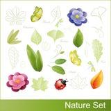 Ensemble d'éléments de nature Photographie stock libre de droits