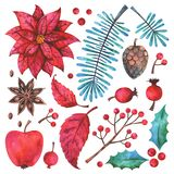 Ensemble d'éléments floral d'aquarelle de Joyeux Noël et de bonne année illustration stock