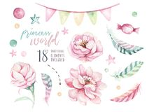 Ensemble d'éléments floraux de boho d'aquarelle Cadre naturel de Bohème pour aquarelle de feuillage : feuilles, plumes, fleurs, d illustration libre de droits