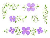 Ensemble d'éléments floraux de décor comme configurations Photographie stock