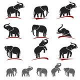 Ensemble d'éléphant Vecteur Photo stock