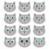 Ensemble d'émoticônes mignonnes de chat Images stock
