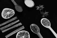Ensemble d'épices sur le fond en bois gris-foncé La composition du condiment, se ferment  Concept d'art de nourriture photos stock