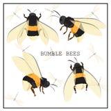 Ensemble d'abeille de miel Vecteur Ensemble de miel et d'abeille illustration stock