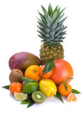 Ensemble d'agrume et de fruits tropicaux photographie stock