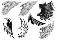 Ensemble d'ailes héraldiques d'isolement Photos stock