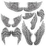 Ensemble d'ailes monochromes d'oiseau de forme différente en position d'ouverture illustration stock