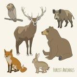Ensemble d'animal de forêt Image libre de droits