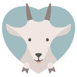 Ensemble d'animal Portrait d'une chèvre dans l'amour dans l'appartement Image libre de droits