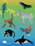 Ensemble d'animaux image stock