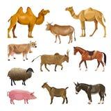 Ensemble d'animaux de ferme illustration libre de droits