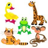 Ensemble d'animaux de zoo. illustration.characters Photo libre de droits