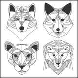 Ensemble d'animaux polygonaux Logos polygonaux Ensemble géométrique de loup, renard, jaguar, lion illustration libre de droits