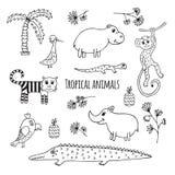 Ensemble d'animaux tropicaux noirs et blancs Images stock