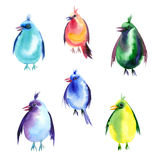 Ensemble d'aquarelle d'oiseaux Images stock
