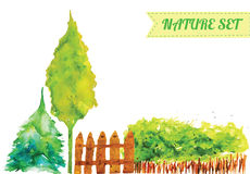 Ensemble d'aquarelle de vecteur d'objets verts de nature Photographie stock libre de droits