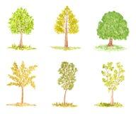 Ensemble d'arbres d'aquarelle, d'isolement sur le blanc Images stock