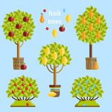 Ensemble d'arbres fruitiers Illustration plate de vecteur Photo libre de droits