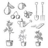 Ensemble d'articles de jardinage Photo libre de droits