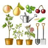 Ensemble d'articles de jardinage Photographie stock libre de droits