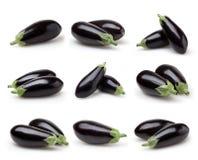 Ensemble d'aubergines d'isolement sur le blanc Photo libre de droits