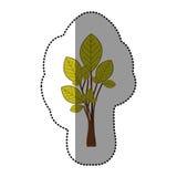 ensemble d'autocollant de vert de chaux d'icône abstraite d'arbre Photographie stock