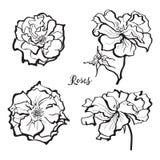 Ensemble d'autocollants roses de fleur Images libres de droits