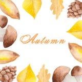 Ensemble d'automne d'aquarelle de champignons, feuilles sur un fond blanc illustration libre de droits