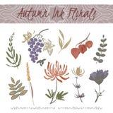 Ensemble d'automne d'encre de couleur floral avec le chrysanthème et le raisin illustration libre de droits