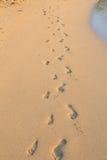 Ensemble d'empreintes de pas dans le sable sur la plage d'Hawaï Photographie stock