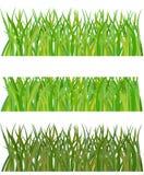 Ensemble d'herbe illustration libre de droits