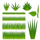 Ensemble d'herbe et de centrales illustration stock