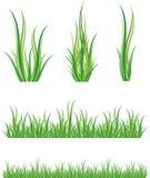 Ensemble d'herbe verte Photo libre de droits