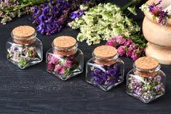 Ensemble d'herbes curatives Photo stock