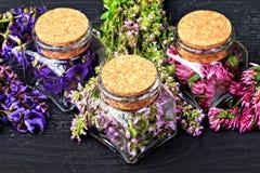 Ensemble d'herbes curatives Image stock