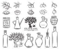Ensemble d'huile d'olive illustration de vecteur