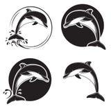 Ensemble d'icônes, d'emblèmes et de labels de dauphin de vintage avec des vagues et des baisses de l'eau Photos stock