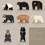 Ensemble d'icônes géométriques plates d'ours Photo stock