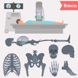 Ensemble d'icônes squelettiques humaines de différentes pièces Équipez l'illustration d'examen de rayon X pour le Web et la conce Photos libres de droits