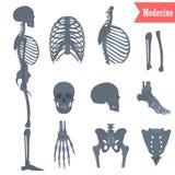 Ensemble d'icônes squelettiques humaines de différentes pièces pour le Web et la conception mobile Illustration Libre de Droits