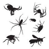 Ensemble d'icône d'insectes Image stock